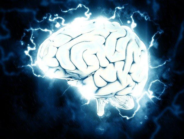 神経伝達物質を活用